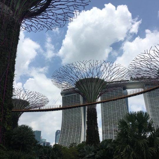 Marina Bay Sands Experience